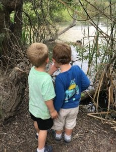 Boys Looking on Nature Walk find Turtle
